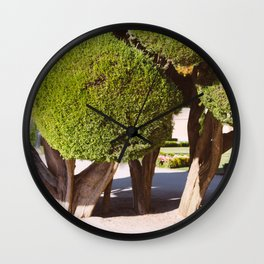 fools wear crowns Wall Clock