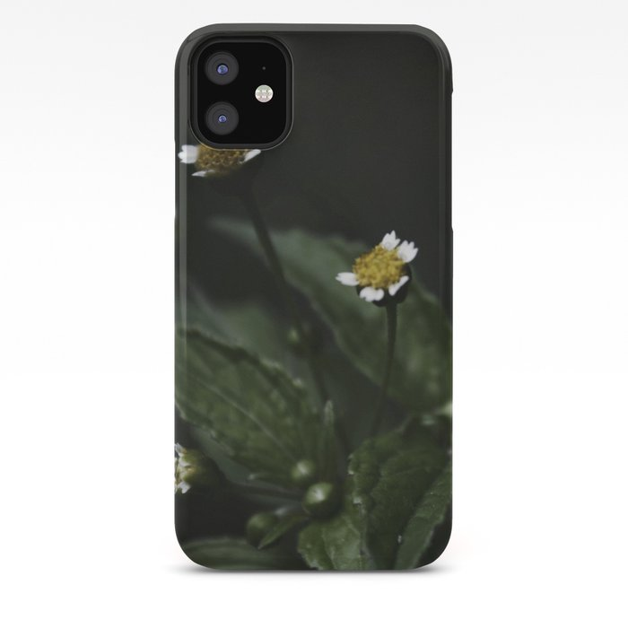 Botanical Still Life Chamomile iPhone Case
