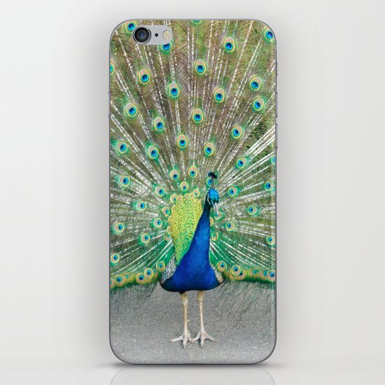 Coat of Many Colors iPhone & iPod Skin