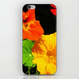 Spring is Here Two iPhone Skin