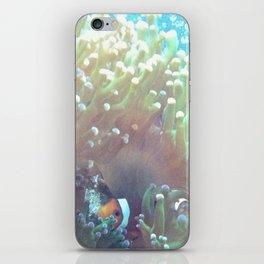 Clown Fish iPhone Skin