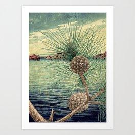 A Hidden View of O-nen Shore Art Print