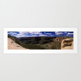 Mesa Verde Canyon Art Print