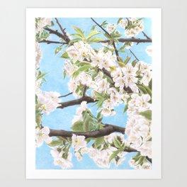 Spring is here Art Print