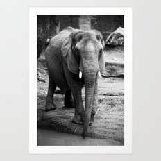 Gentle One Art Print