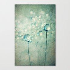 A Pair of Sparkles Canvas Print