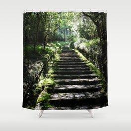 Rikyuu Road Shower Curtain