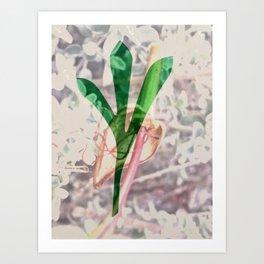 Leaf Projection Screen #5 [Cecilia Lee] Art Print