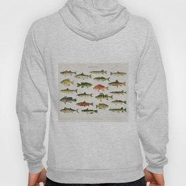 Illustrated North America Game Fish Identification Chart Hoody