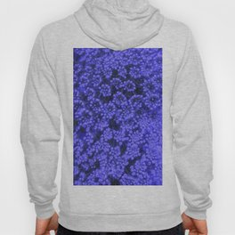 Blue Queen Anne's Lace (Up Close) Hoody