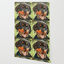 Chubby Rottweiler Puppy Wallpaper