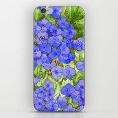 Hydrangeas iPhone & iPod Skin