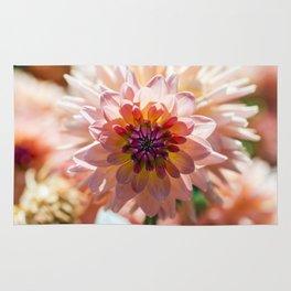 Dahlia / In The Garden / 6 Rug