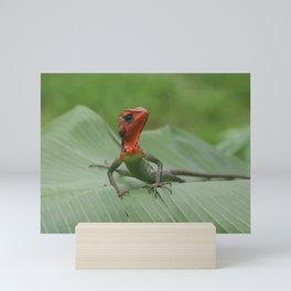 Gecko iguana Red Head Mini Art Print