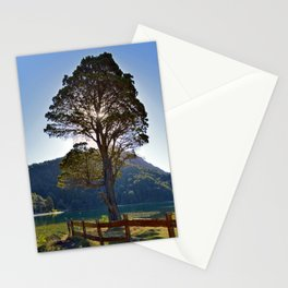 The Big Tree at Patagonian Lake Stationery Cards