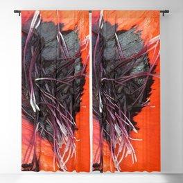 Mohn Blackout Curtain