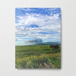 Hawaiian Sky Metal Print