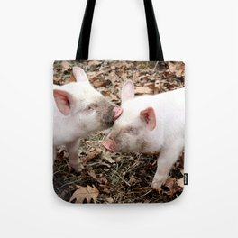 Piglet Brothers Tote Bag