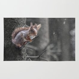 squirrel in the snow Rug