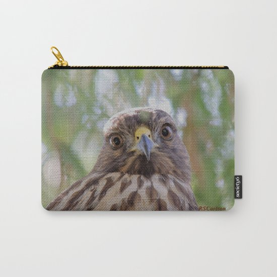 Hawk Eyes in the Willow Carry-All Pouch