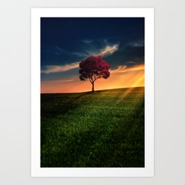 Pretty Landscape with a Red Tree at Sunset Art Print