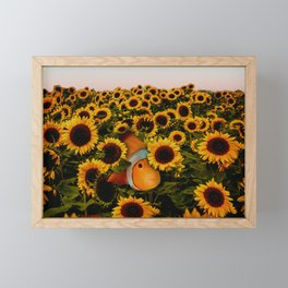 Finding Nemo Framed Mini Art Print
