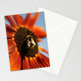 Busy Busy Bumblebee Stationery Cards