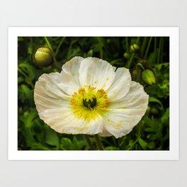 Medium Sized Flower Art Print