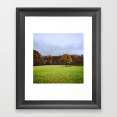 Alone but not Lonely. Framed Art Print
