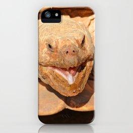 Geochelone sulcata iPhone Case
