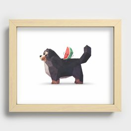 Watermelon on Bernese Mountain Dog Recessed Framed Print