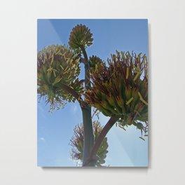 Agave Flower Metal Print
