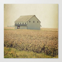 Lost in the prairie Canvas Print