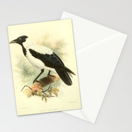 Hooded Crow (Mesopotamian) Stationery Cards