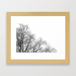A tree and his crown in winter I Framed Art Print
