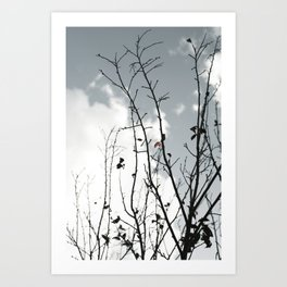 The Last To Fall Art Print