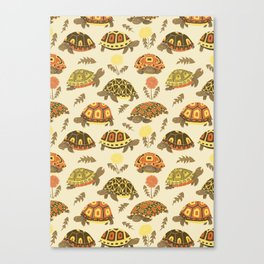 Tubby Torts Canvas Print