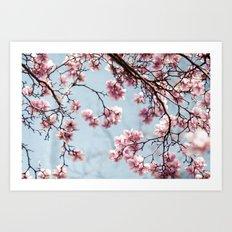 Spring 4 Art Print