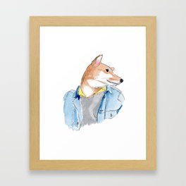 stylish Shibainu dog in jeans jacket Framed Art Print