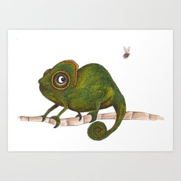 Chameleon vs fly Art Print
