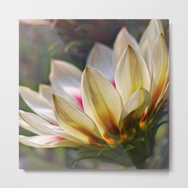 Glowing Gazania Metal Print