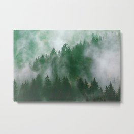 Clear life's mist to see beauty. Green Metal Print