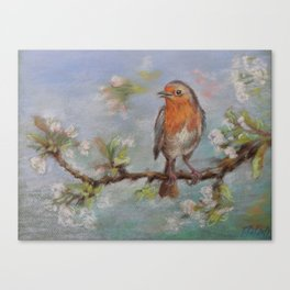 Red Robin Small bird on a blooming twig Wildlife spring scene Pastel drawing Canvas Print
