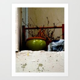 Crevices for Growth III Art Print