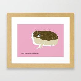 Desert Rain Frog Framed Art Print