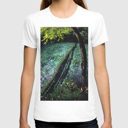 Ginnie Springs Fisheye T-shirt