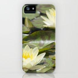 Longwood Gardens - Spring Series 303 iPhone Case