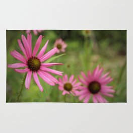 Tennessee Coneflower Rug