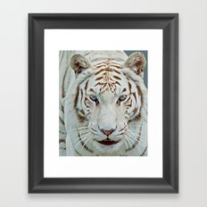 TIGER TIGER 2 Framed Art Print
