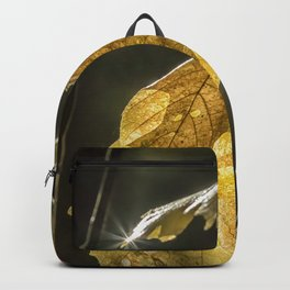 Touched by Light Backpack
